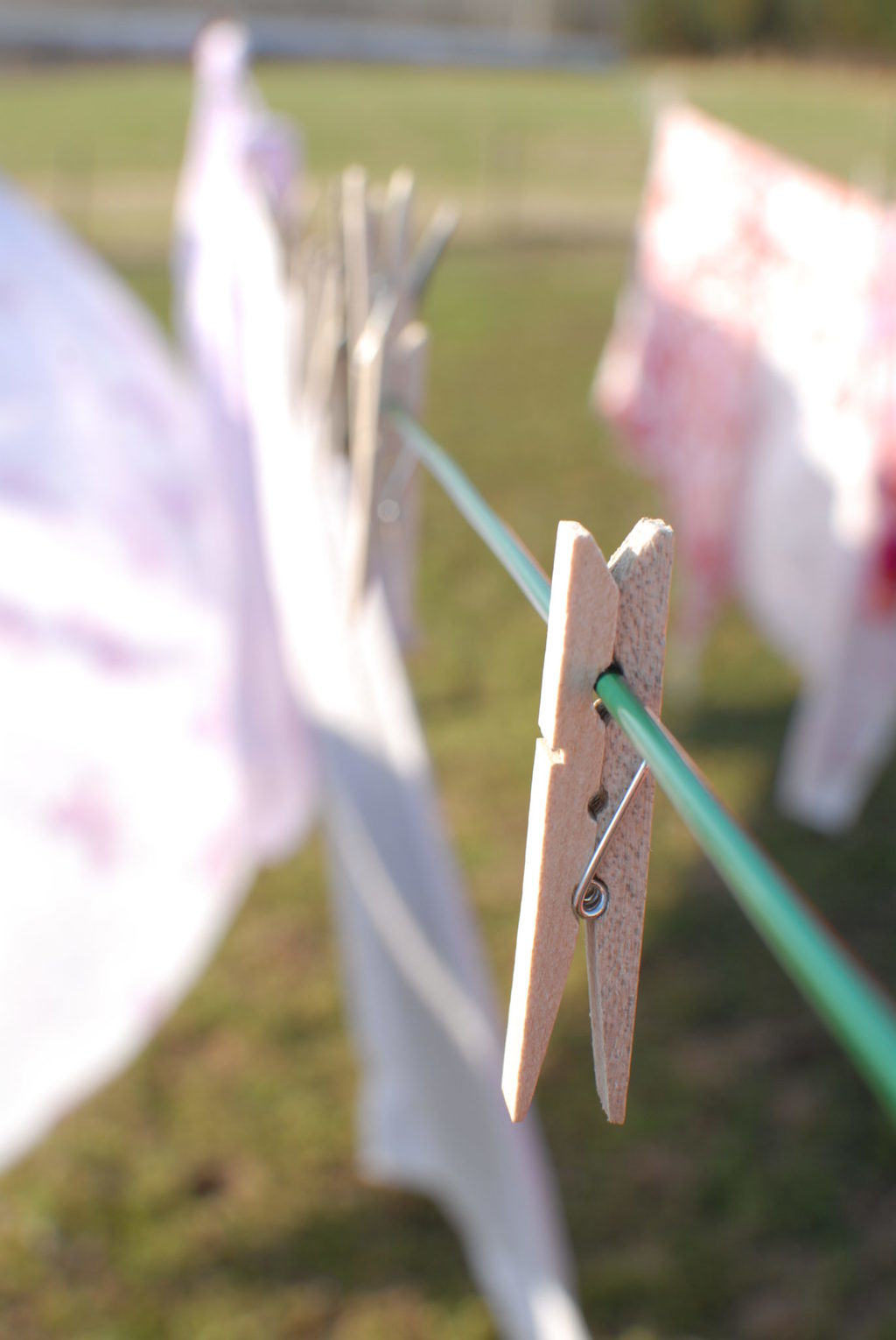 Cows, Clotheslines, And Moving To The Country
