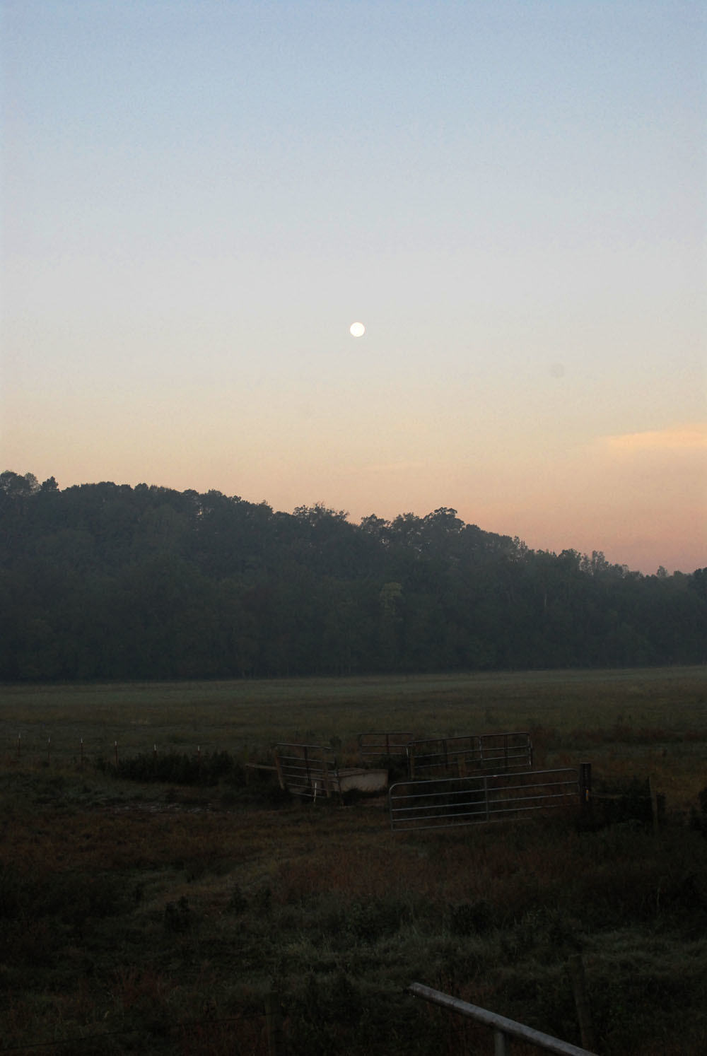 Pasture At Twilight