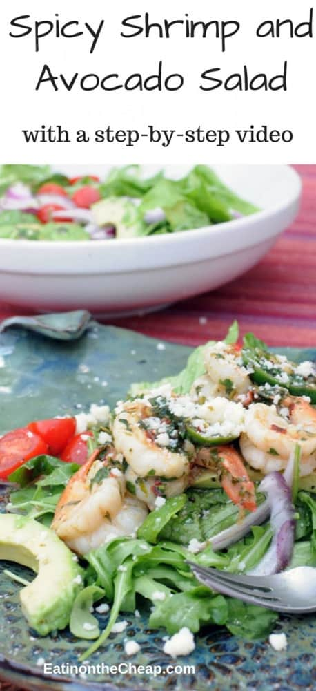 Spicy Shrimp And Avocado Salad